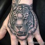 фото татуировка оскал тигра от 01.06.2018 №076 - tiger tattoo - tatufoto.com