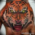 фото татуировка оскал тигра от 01.06.2018 №087 - tiger tattoo - tatufoto.com