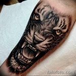 фото татуировка оскал тигра от 01.06.2018 №098 - tiger tattoo - tatufoto.com