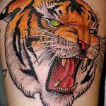 фото татуировка оскал тигра от 01.06.2018 №106 - tiger tattoo - tatufoto.com