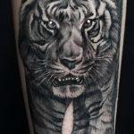 фото татуировка оскал тигра от 01.06.2018 №111 - tiger tattoo - tatufoto.com
