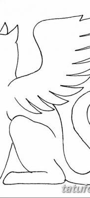 фото тату Кошка с крыльями от 26.06.2018 №023 – Cat tattoo with wings – tatufoto.com