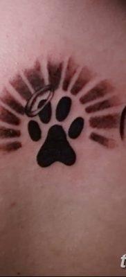 фото тату Кошка с крыльями от 26.06.2018 №025 – Cat tattoo with wings – tatufoto.com