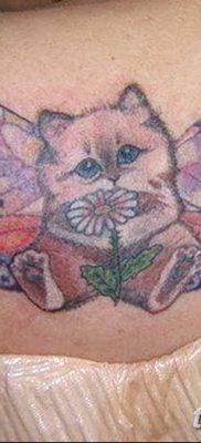 фото тату Кошка с крыльями от 26.06.2018 №046 – Cat tattoo with wings – tatufoto.com