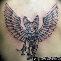 Значение тату кошка с крыльями