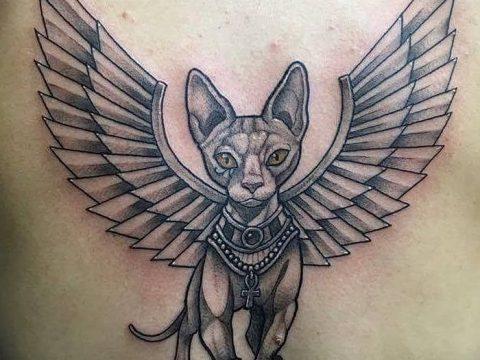 фото тату Кошка с крыльями от 26.06.2018 №049 - Cat tattoo with wings - tatufoto.com