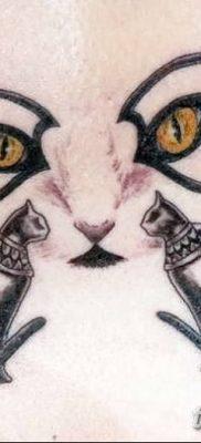 фото тату Кошка с крыльями от 26.06.2018 №055 – Cat tattoo with wings – tatufoto.com