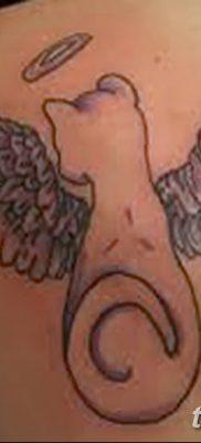 фото тату Кошка с крыльями от 26.06.2018 №079 – Cat tattoo with wings – tatufoto.com