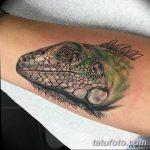 фото тату игуана от 26.06.2018 №001 - tattoo of iguana - tatufoto.com