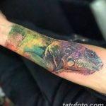 фото тату игуана от 26.06.2018 №002 - tattoo of iguana - tatufoto.com