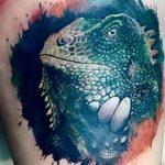 фото тату игуана от 26.06.2018 №004 - tattoo of iguana - tatufoto.com