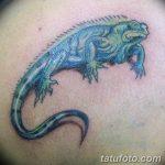 фото тату игуана от 26.06.2018 №012 - tattoo of iguana - tatufoto.com