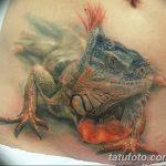 фото тату игуана от 26.06.2018 №014 - tattoo of iguana - tatufoto.com