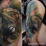 фото тату игуана от 26.06.2018 №018 - tattoo of iguana - tatufoto.com