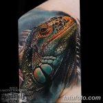 фото тату игуана от 26.06.2018 №020 - tattoo of iguana - tatufoto.com