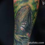 фото тату игуана от 26.06.2018 №021 - tattoo of iguana - tatufoto.com