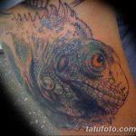 фото тату игуана от 26.06.2018 №028 - tattoo of iguana - tatufoto.com