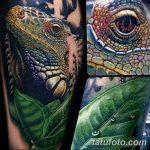 фото тату игуана от 26.06.2018 №034 - tattoo of iguana - tatufoto.com