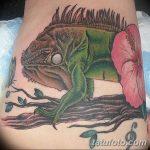 фото тату игуана от 26.06.2018 №035 - tattoo of iguana - tatufoto.com