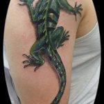 фото тату игуана от 26.06.2018 №037 - tattoo of iguana - tatufoto.com