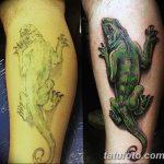 фото тату игуана от 26.06.2018 №040 - tattoo of iguana - tatufoto.com