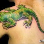 фото тату игуана от 26.06.2018 №042 - tattoo of iguana - tatufoto.com