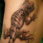фото тату игуана от 26.06.2018 №043 - tattoo of iguana - tatufoto.com