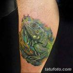 фото тату игуана от 26.06.2018 №044 - tattoo of iguana - tatufoto.com