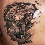 фото тату игуана от 26.06.2018 №050 - tattoo of iguana - tatufoto.com