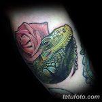 фото тату игуана от 26.06.2018 №051 - tattoo of iguana - tatufoto.com