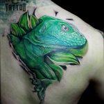 фото тату игуана от 26.06.2018 №059 - tattoo of iguana - tatufoto.com