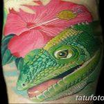 фото тату игуана от 26.06.2018 №060 - tattoo of iguana - tatufoto.com
