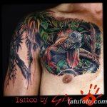 фото тату игуана от 26.06.2018 №064 - tattoo of iguana - tatufoto.com