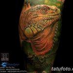 фото тату игуана от 26.06.2018 №066 - tattoo of iguana - tatufoto.com