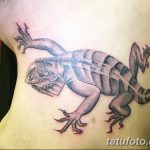 фото тату игуана от 26.06.2018 №072 - tattoo of iguana - tatufoto.com