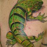 фото тату игуана от 26.06.2018 №074 - tattoo of iguana - tatufoto.com