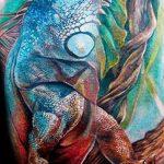 фото тату игуана от 26.06.2018 №075 - tattoo of iguana - tatufoto.com