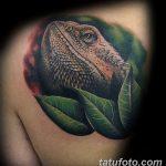 фото тату игуана от 26.06.2018 №079 - tattoo of iguana - tatufoto.com
