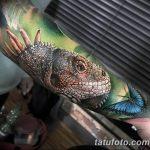 фото тату игуана от 26.06.2018 №082 - tattoo of iguana - tatufoto.com