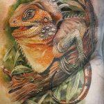 фото тату игуана от 26.06.2018 №085 - tattoo of iguana - tatufoto.com