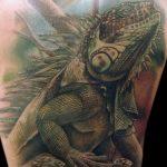 фото тату игуана от 26.06.2018 №089 - tattoo of iguana - tatufoto.com