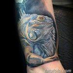 фото тату игуана от 26.06.2018 №091 - tattoo of iguana - tatufoto.com