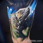 фото тату игуана от 26.06.2018 №099 - tattoo of iguana - tatufoto.com