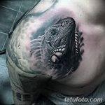 фото тату игуана от 26.06.2018 №100 - tattoo of iguana - tatufoto.com