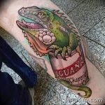 фото тату игуана от 26.06.2018 №102 - tattoo of iguana - tatufoto.com