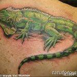 фото тату игуана от 26.06.2018 №110 - tattoo of iguana - tatufoto.com