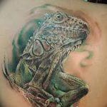 фото тату игуана от 26.06.2018 №111 - tattoo of iguana - tatufoto.com