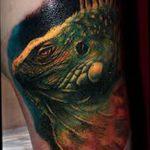 фото тату игуана от 26.06.2018 №115 - tattoo of iguana - tatufoto.com