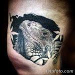 фото тату игуана от 26.06.2018 №119 - tattoo of iguana - tatufoto.com