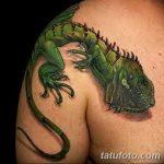 фото тату игуана от 26.06.2018 №128 - tattoo of iguana - tatufoto.com